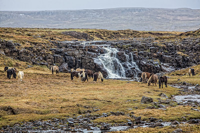 Iceland_2012_Exports_LR (257 of 275)