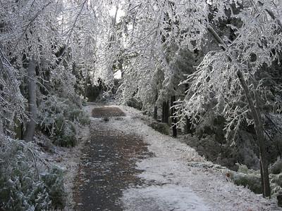 Icy Hike