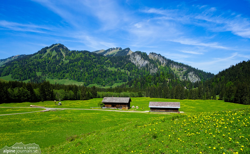 Iferwiesalpe near Schönenbach
