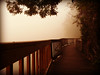 Early on a foggy morning on the boardwalk along the Tennessee River.