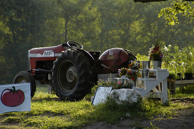 Early summer morning at the Farm Stand