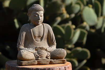 © Joseph Dougherty. All rights reserved.  Buddha statuette with cactus in the garden.