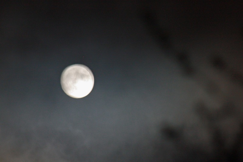 Full moon, 8/3/09 - actually got some of the features (very fuzzy).