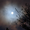 Full moon, 8/3/09
