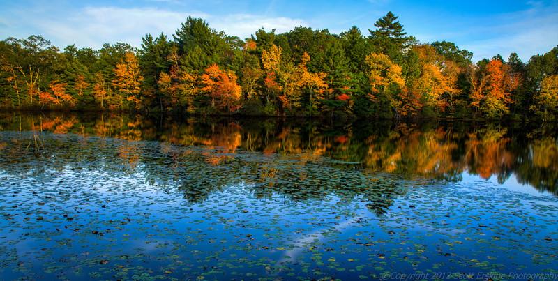 Late Afternoon Light, Silver Lake, Grafton Massachusetts