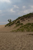 Indiana Sand Dunes National Lakeshore 5