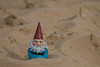 Indiana Sand Dunes National Lakeshore Gnome