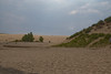 Indiana Sand Dunes National Lakeshore 6