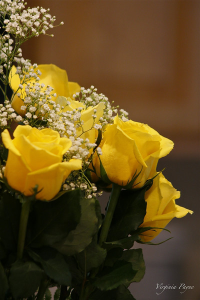 Birthday Yellow roses