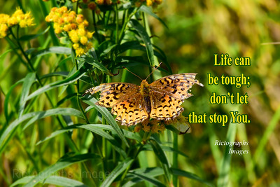 Photo Quote, Rictographs Images