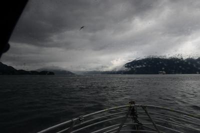 Holkham Bay, entrance to Tracy Arm, Alaska