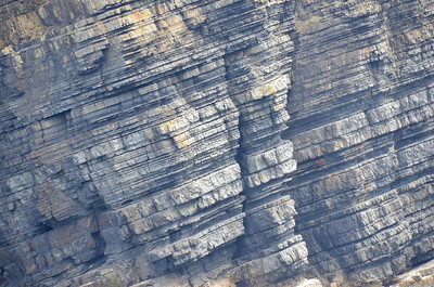 Layercake stratigraphy (at this scale) of turbidites in the Ross Formation