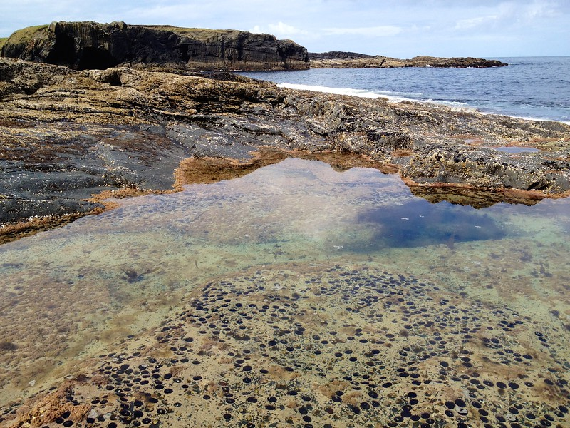 Tidal pool near Bridges of Ross