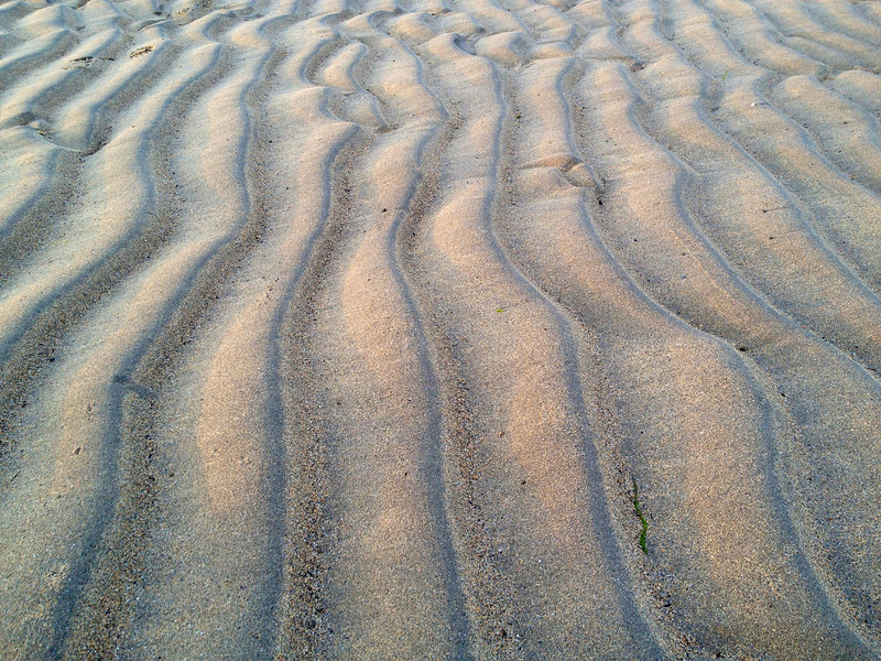Asymmetric wave ripples, with coarser sediment in the troughs