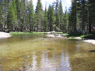 Lyell Fork of Tuolumne River. Ranger station is just north of here on other side of river.