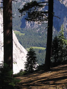 Meadows in Yosemite Valley, from Panorama trail between Glacier Point and Nevada Fall.
