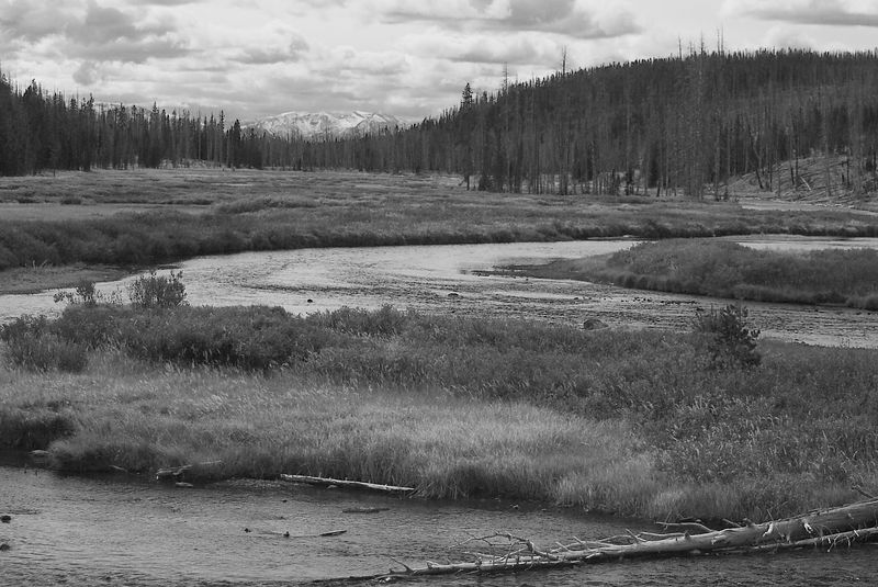 Snake River and Grand Tetons, Wyoming <br>Copyright 2003 Adam Brown