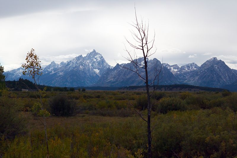 Grand Tetons, Wyoming <br>Copyright 2003 Adam Brown
