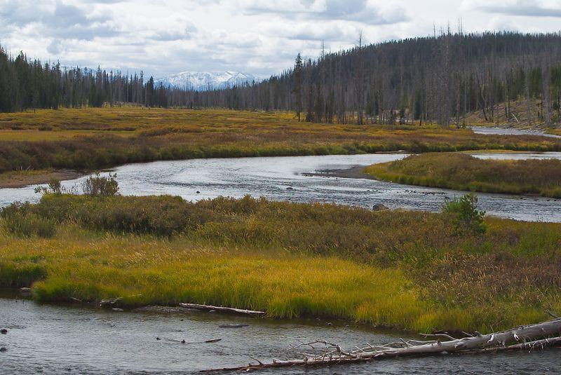 Snake River & Grand Tetons, Wyoming <br>Copyright 2003 Adam Brown