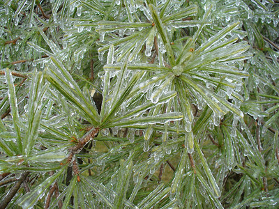 January 13, 2007 ice storm