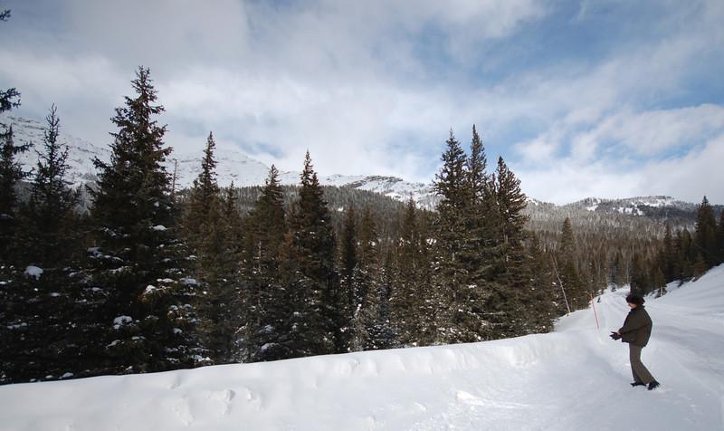 Northeast, near Barronette Trail