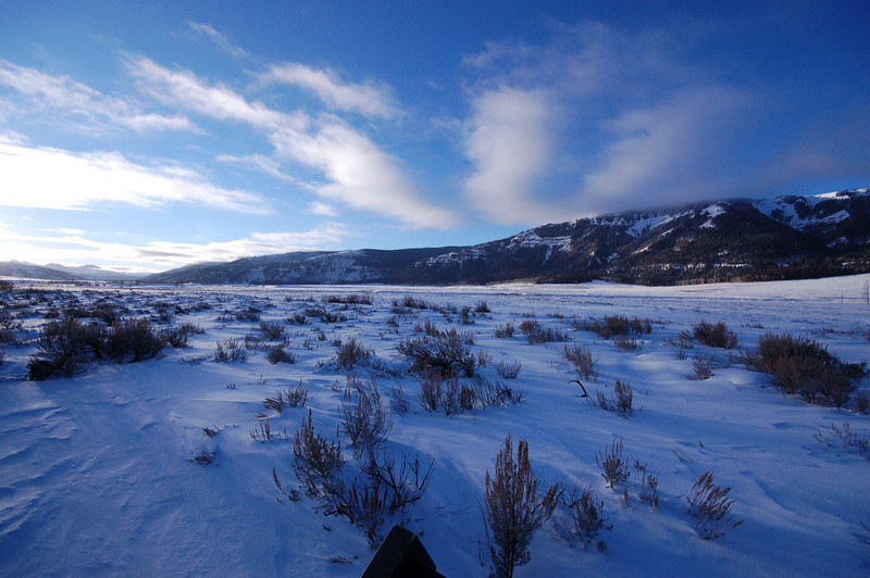 Specimen Ridge, Lamar Valley