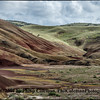 Green Velvet on the Painted Hills