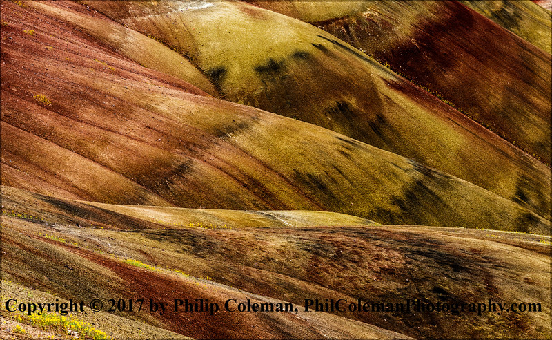 Painted Hills Detail #2