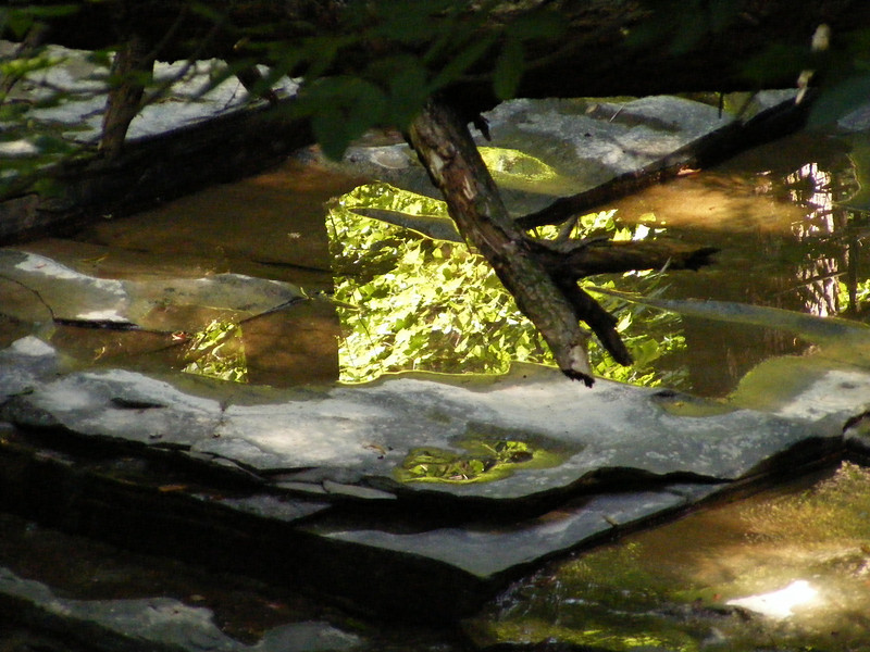 Buttermilk Falls, Ithaca, NY August 2009 - JR