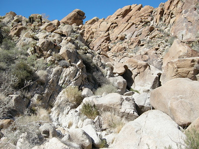 Looking back up the canyon, just below a constricted spot. Some creative boulder-hopping was called for.