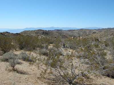 Creosote in the foreground, Salton Sea and mountains beyond.