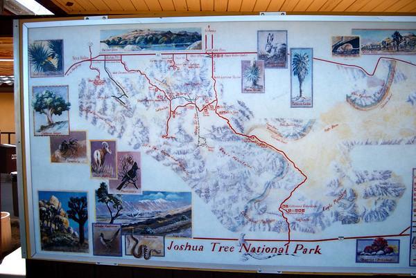 Joshua Tree National Park Hike