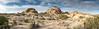 <h2>Joshua Tree</h2><h3>Jumbo Rocks Area</h3>A scene from Joshua Tree National Park.