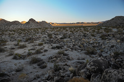 Pinto Basin
