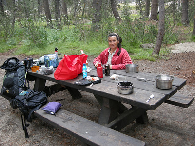 """Not bad for a free campground. A humorous side-note: sleeping in the Element, we heard a somewhat-noisy car come driving up the road and seemingly stop right next to us. I poked out my head; sure enough, there was a pickup truck no more than four feet away! Plus two other cars! I opened the door a bit, and explained that actually this was a campsite, not a parking lot, and they should please leave. Well, they were confused and upset, mostly because there wasn't any cell coverage and they'd lost track of part of their group (""""There will NEVER be any cell coverage up here. Not in 10,000 years!"""" I said.) I think they'd never been in a campground and just didn't understand what the unwritten rules are. The guy with the truck sheepishly popped the hood of his truck and poked at the starter with a stick, the engine grinding to life, and they all took off, a bit flustered. By this time, I was laughing quite loudly, because the entire scenario was rather absurd."""