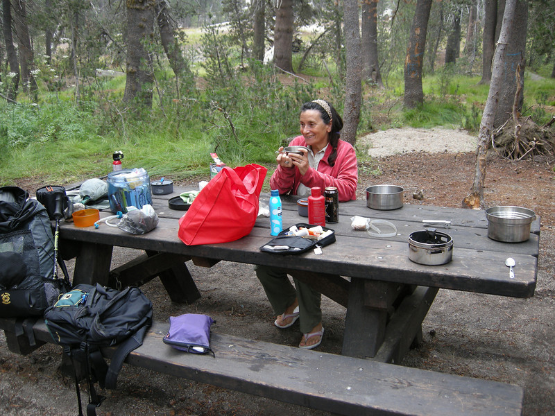 A cup of tea the next morning in the Big Meadows campground. We spent the night comfily ensconced in the Element, and glad we did, as it rained overnight.