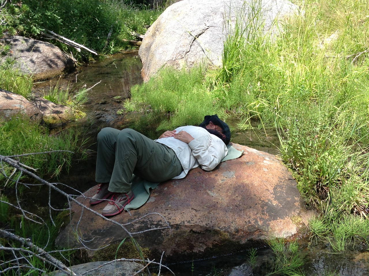 Michèle's solution to the crawling bugs - a nap-spot on a boulder in the nearby small stream. She snoozed quite contentedly for 20-30 minutes while I sat nearby.