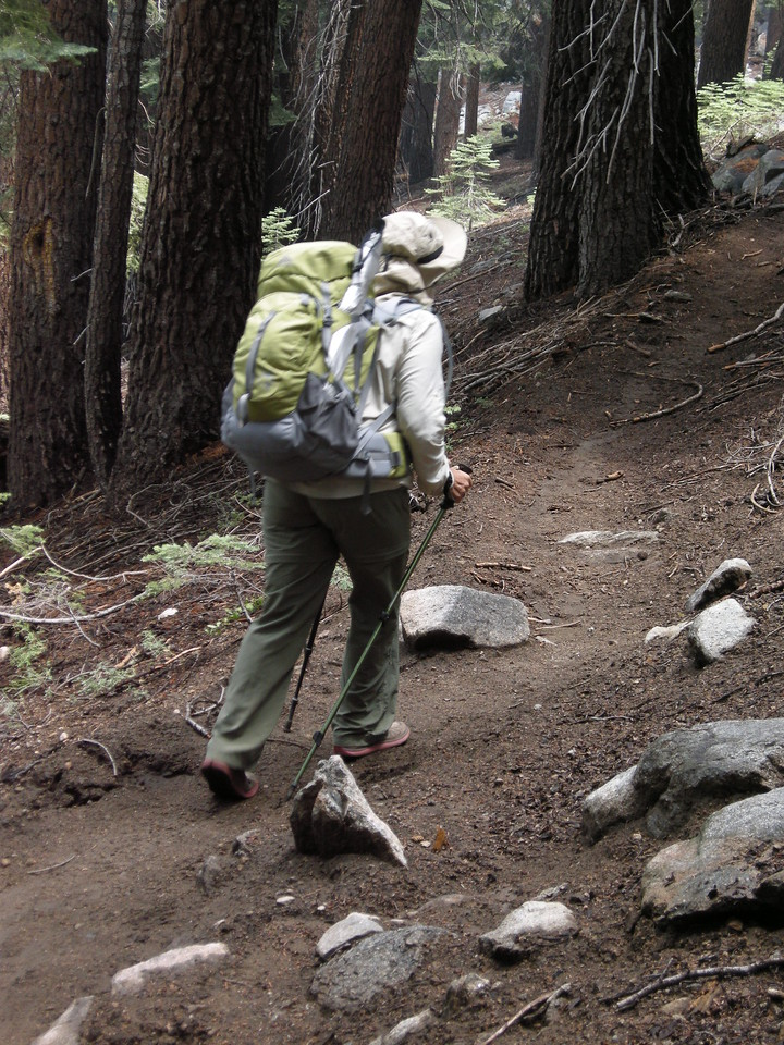 Hiking the trail up to Marvin Pass. The previous night's rain had made the trail dust-free and pleasant.