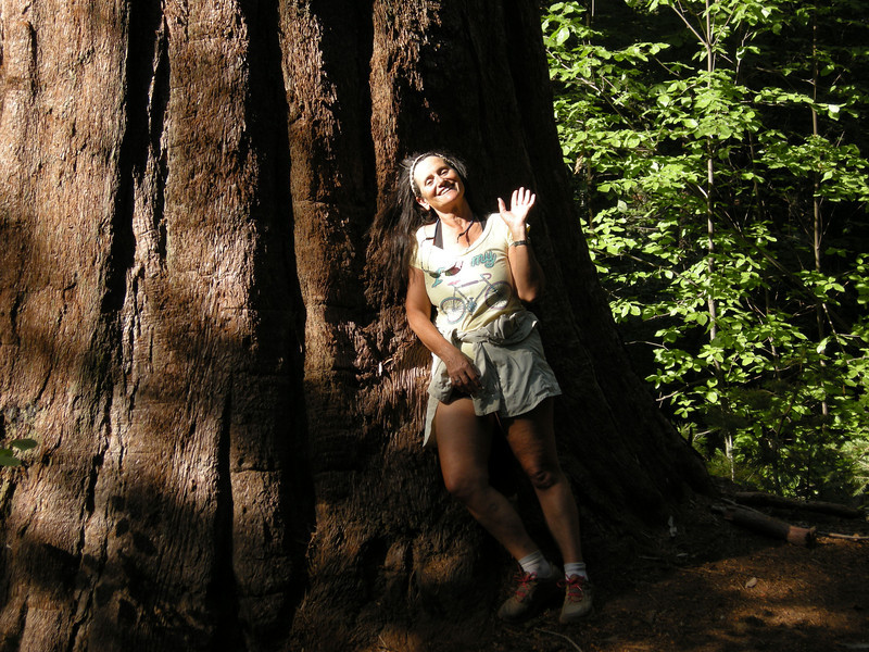 Michèle at the base of a Giant Sequoia in the Redwood Mountain Grove, part of Kings Canyon National Park. We had to drive to Grant Grove to get out wilderness permit, and this redwood grove was on the way back to our intended overnight car camping location at Big Meadows.