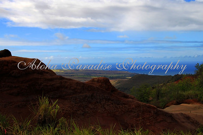 WAIMEA CANYON DRIVE VIEW