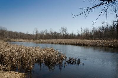 Kalamazoo River east of Homer, MI