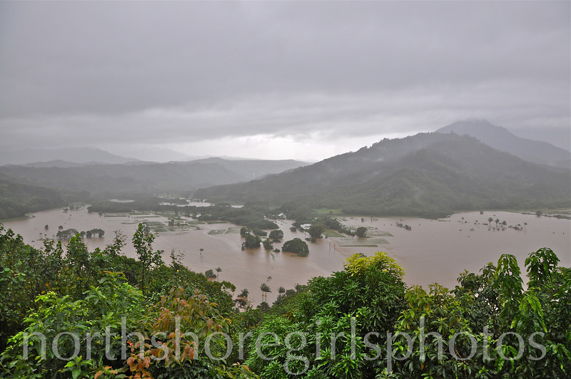 March 4, 2012 Hanalei Valley Flooded