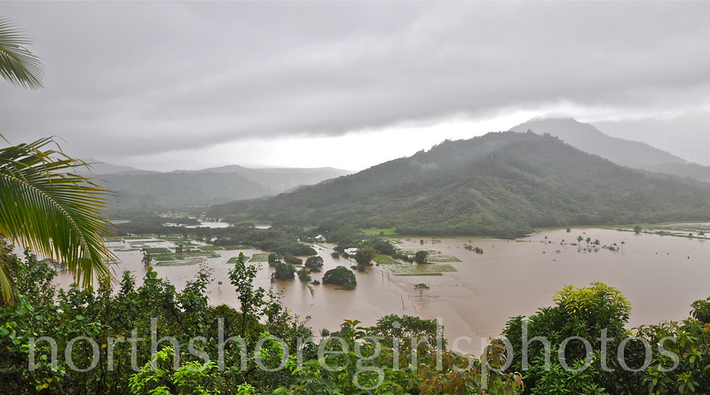 March 4, 2012 Hanalei River spills over......