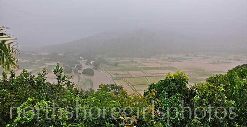 March 5, 2012<br /> Still Raining on Kauai