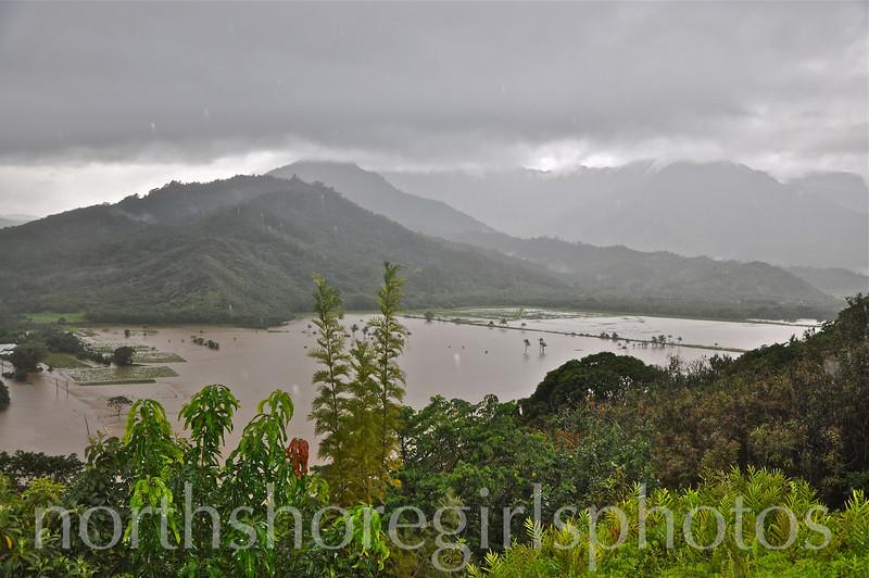 March 4, 2012 hanalei valley