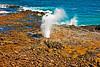 Kauai2009#9