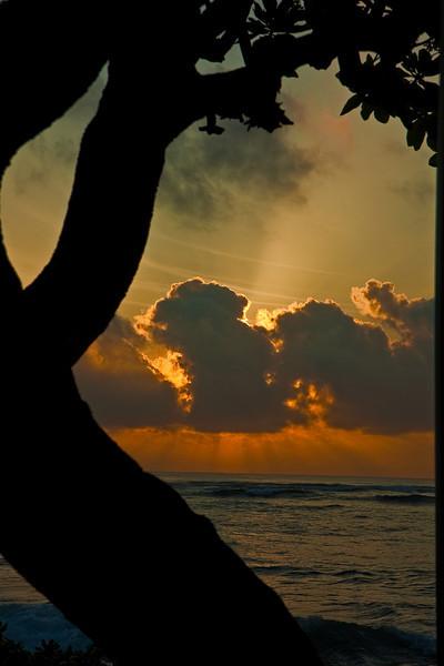 Kauai2009#47