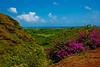 Kauai2009#8