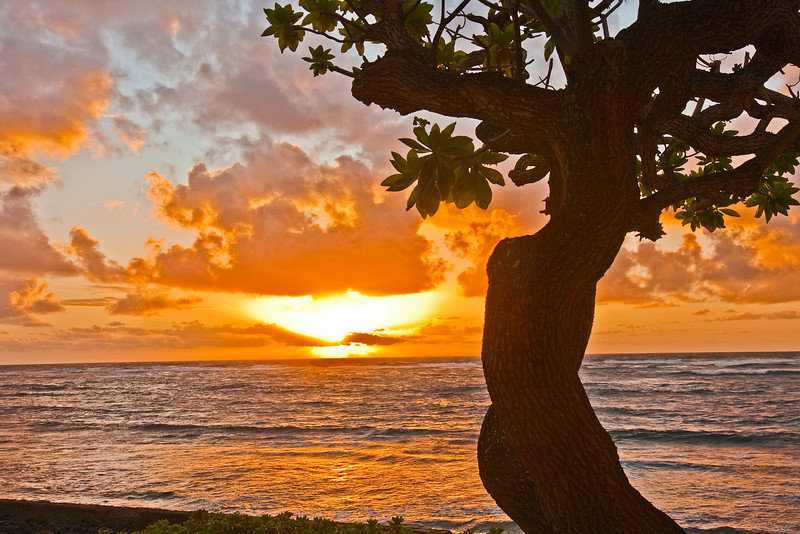 Kauai2009#17