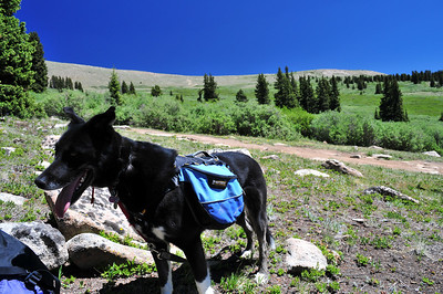 Kenosha Pass Hike